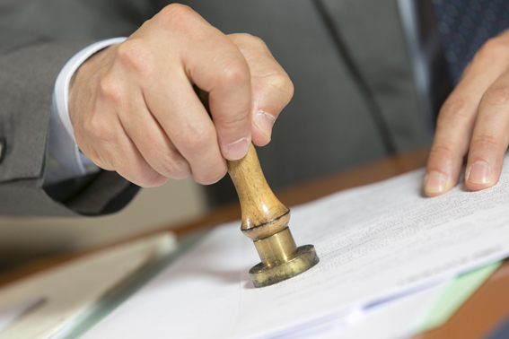 assunzioni ordine notarile